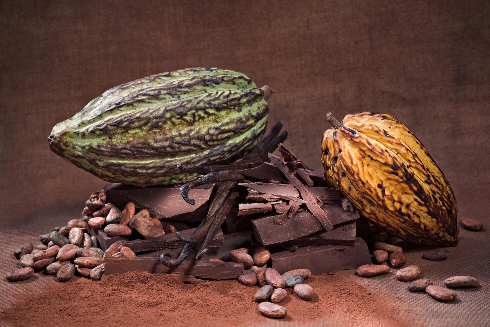 La force évocatrice du chocolat